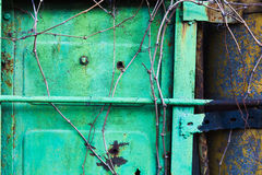 Old rusty garage door. In green color Stock Photo