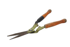 Old and rusty garden shears. On a white background Stock Images