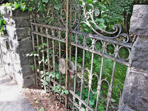 Free Old Rusty Gate Royalty Free Stock Photo - 50302165