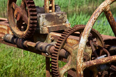 Old rusty gears and cogs. In nature Royalty Free Stock Images
