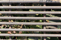 Old and rusty iron bars. In the background dried leaves and gras Royalty Free Stock Photos