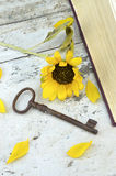 Old rusty key and sunflower Royalty Free Stock Photography