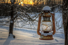 Old rusty lantern hanging from a tree Royalty Free Stock Photo