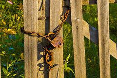 The old rusty lock on a fence Stock Photography