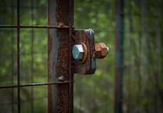 The old and rusty lock on a metal gate Royalty Free Stock Photography