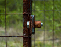 The old and rusty lock on a metal gate Stock Images