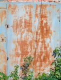 Old rusty metal garage door. Painted in grey with plants stock images