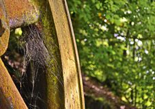 Old rusty metal wheel in nature with a spider web inside stock image