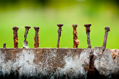 Old and rusty nails. Closeup details of rusty nails in old wooden plank Royalty Free Stock Image