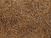 Old rusty nails of different sizes. Royalty Free Stock Images