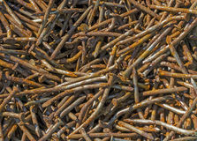 Old rusty nails. Many old rusty nails, lay in a heap Royalty Free Stock Photos