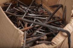 Old rusty nails in a paper box. Closeup of bunch old rusty nails in a paper box Royalty Free Stock Photography