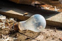 Old rusty nonfunctional Light Bulb E27 Stock Photo