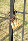 Old rusty padlock on metal fence close up Royalty Free Stock Photos