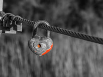 Old rusty padlocks on metal cable in black and white. Stock Photography