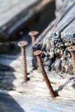 Old rusty screw Stock Photos
