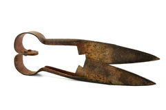 Old rusty sheep shearing scissors Royalty Free Stock Photography
