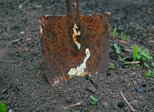 Old rusty shovel in the ground Royalty Free Stock Images