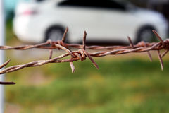 Old rusty steel barbed wire on blurred background.  Royalty Free Stock Photography
