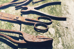 Old rusty tools, scissors, nail, pliers Stock Images