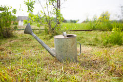 Old, rusty watering can standing on grass Royalty Free Stock Photos