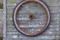 Old rusty wheel. Of bike on the wooden wall Royalty Free Stock Images
