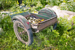 Old Rusty Wheelbarrow Stock Photos