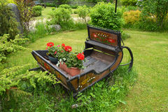 Old rusty wooden sleigh with flower in ranch Royalty Free Stock Photos