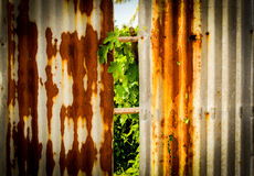 Old rusty of zinc sheet  fence is grunge  background. Old rusty of zinc sheet  fence is grunge  background around the home Stock Photography