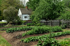 Old Salem NC: Miksch House Colonial Garden Royalty Free Stock Photos