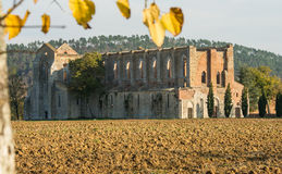 Old San Galgano abbey Stock Photography