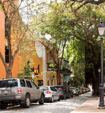 Old San Juan Tree Lined Street. Cars are lined up down a tree lined street in Old San Juan, Puerto Rico stock image