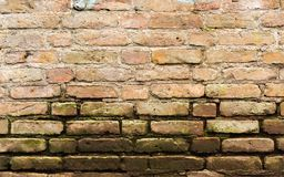 Old sandstone wall with moss. Old dirty sandstone wall with moss at the bottom edge Stock Image