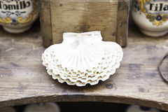 Old scallop shells Royalty Free Stock Photography