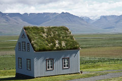Old scandinavian house with grass on the roof Royalty Free Stock Images