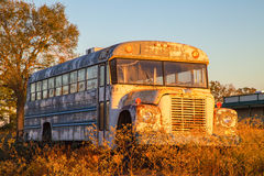 Old school bus in field Stock Images