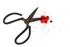 Old scissors and a drop of blood. Stock Photos