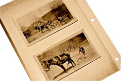 Old Scrapbook Page/Men Mule. Two lifestyle depicting photos from an old scrapbook.  Men working on farm with a mule Stock Photos