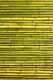 Old scratched green yellow bamboo fence horizontal background Stock Images