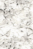 Old scratched paper template Royalty Free Stock Photo