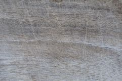 Old scratched wooden surface Stock Photography