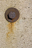 Old screw on concrete Stock Photography