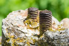 Old screws in stone. In macro royalty free stock photo