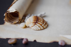 Old scroll of parchment with sea pebbles and Royalty Free Stock Photo