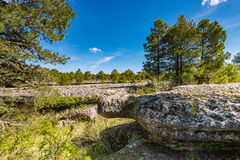 Old sea bed in Enchanted City, Cuenca,Spain Stock Photo