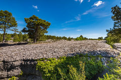 Old sea bed in Enchanted City, Cuenca,Spain Royalty Free Stock Photo