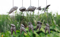 Old  sea shell hang mobile. Hanging outdoor Royalty Free Stock Photography