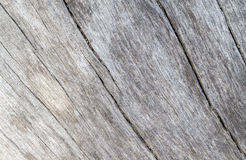 Old sea wood texture with curves photo. Weathered timber board with crack lines. Stock Image