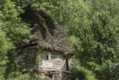 Old self sustainable home in the forest. Among green trees Stock Images
