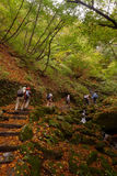 Old senior hiking up rock mountain stair case in autumn jungle Royalty Free Stock Photos